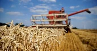 Ціна високого ПДВ: Україна щорічно втрачає 2 млрд доларів через схеми міжнародних зернотрейдерів