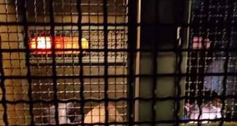 На акції у підтримку Стерненка масово затримують протестувальників, залучили Нацгвардію