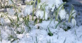 Гололедица и штормовой ветер: прогноз погоды во Львове и области на 27 февраля