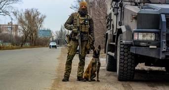 Собака допоміг відшукати схрон боєприпасів у прифронтовій Авдіївці: фото