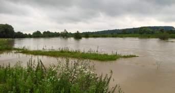 """""""Річки обов'язково вийдуть з берегів"""": Україні слід готуватися до потужних паводків"""