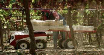 В США представили робота, который будет собирать урожай: чем особый Carry
