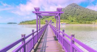 Ідеальна Instagram-локація: курортний острів в Кореї повністю пофарбували у фіолетовий колір