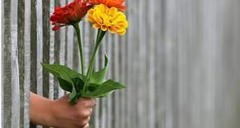 Навстречу 8 марту: 10 важных советов мужчинам