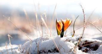 Зима еще вернется: синоптики снова прогнозируют снег