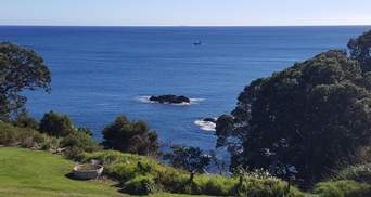 Нову Зеландію сколихнув надпотужний землетрус: є загроза цунамі