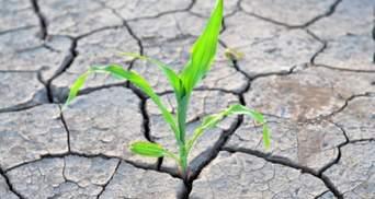 2021 принесе нові погодні рекорди: синоптики прогнозують в Україні сильну посуху