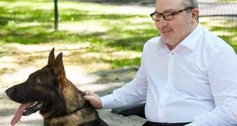 У Харкові виставку собак присвятять пам'яті Кернеса