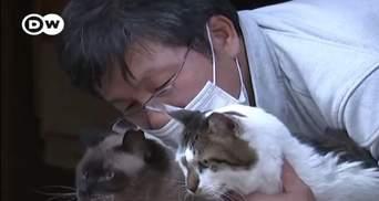 Самый одинокий человек в мире: японец живет в Фукусиме, чтобы заботиться о брошенных кошках