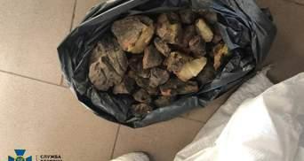 На Ровненщине обнаружили контрабанду янтаря на 2 миллиона