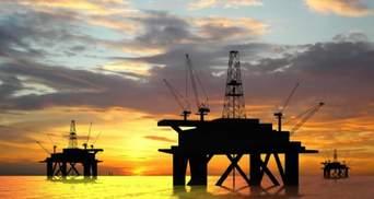 """""""Нафтогаз"""" може залучити ізраїльську компанію для геологічної розвідки в Чорному морі"""