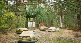 Государство хочет развивать Чернобыль: что построят