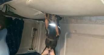 На Одещині службовий пес знайшов 15 кілограмів контрабандного бурштину