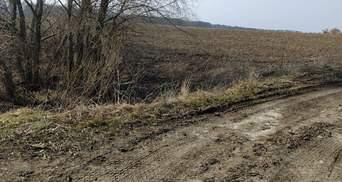 Убийство ветерана в Киеве: подозреваемых взяли под стражу, им грозит пожизненное