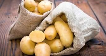 Картопля: шкода чи користь для організму