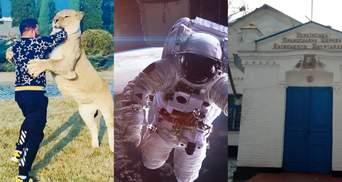 Лев, билет в космос и церковь: политики обнародовали свои зашкварные декларации