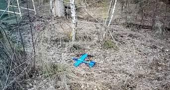 Начинили взрывчаткой игрушку: боевики попытались дистанционно заминировать позиции ВСУ