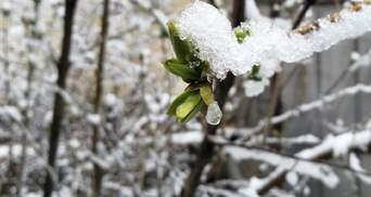 В Украину возвращается снег: где и когда ждать зимнюю погоду