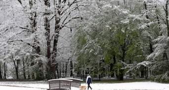 Зимова заметіль у квітні: країни Європи потерпають від снігу – відео