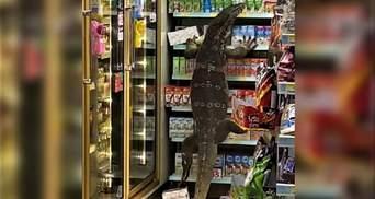 Годзілла у реальному житті: в Таїланді величезний варан влаштував безлад у супермаркеті – відео