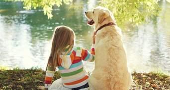 Домашній улюбленець в сім'ї: що про тварин мають знати та розуміти діти