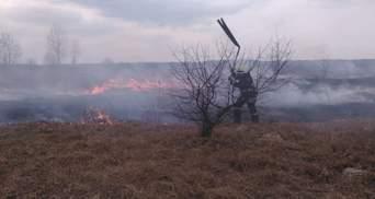 60 пожаров за один день: МВД напомнило о серьезных штрафах для поджигателей