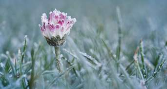 Будет идти снег: на Львовщине прогнозируют резкое похолодание