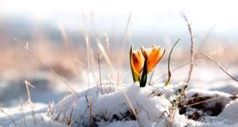 Резкое похолодание: на днях в Украине снова выпадет снег