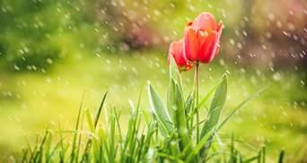 Прогноз погоди на 14 квітня: в Україну йде похолодання