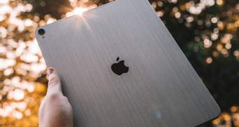 Apple запустила инвестиционный фонд для восстановления лесов: какую сумму выделил техгигант