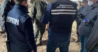 СБУ задержала на взятке главу одного из лесхозов Львовщины: фото