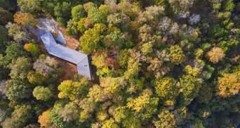 Втеча від світу: серед лісів Теннессі схована неперевершена вілла