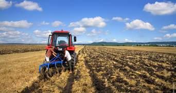 Уряд погодив скасування норми про обов'язкові 2 гектари землі кожному українцю