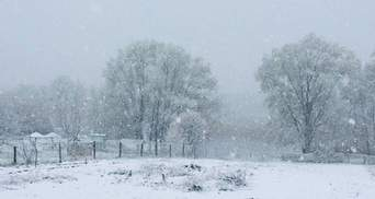 В конце апреля Украину засыпает снегом: фото, видео