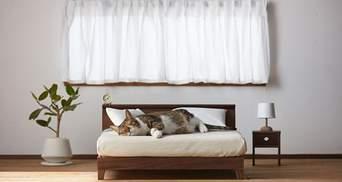 Точная копия больших: создали стильную мини-мебель для котов