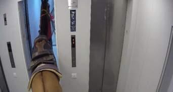 Такого ще не було: у Тель-Авіві двоє чоловіків перевозили коня в ліфті хмарочосу – їх затримали