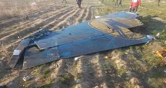 Украина подала замечания к отчету Ирана о крушении самолета МАУ