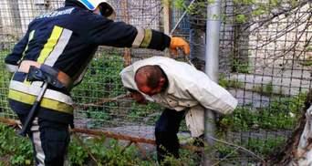 Пытался пролезть и застрял: в Днепропетровской области спасатели вырезали мужчину с забора