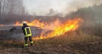 Получил тяжелые ожоги: на Львовщине мужчина сжигал траву и загорелся сам