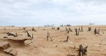 Новая пустыня для Путина: как Россия теряет южные степи Калмыкии