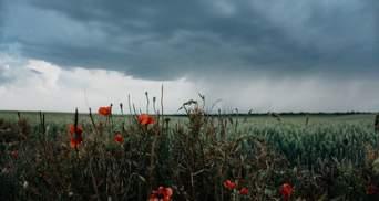 Прогноз погоди на 15 травня: на Західну Україну насуваються грози, а Сході – до +27 градусів