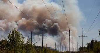В Росії спалахнули масштабні лісові пожежі: вогонь охопив десятки тисяч гектарів