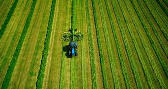 Рада одобрила последний законопроект земельной реформы