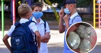 В школах Николаева детей кормили продуктами с плесенью: фото