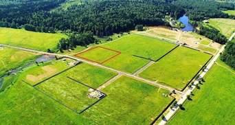 Открытие рынка земли: что нужно сделать владельцам участков накануне