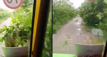 Стежкою через хащі: як учнів під Кропивницьким возять до сільської школи – відео