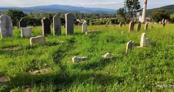 Щось шукали: в Ужгороді вандали розгромили єврейське кладовище – фото