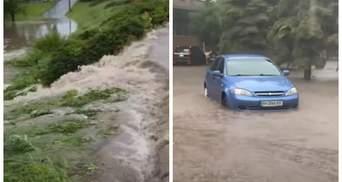 """""""Такого еще не было"""" Мариуполь второй раз за неделю затопило – видео"""