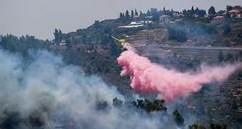 Єрусалимські гори охопили сильні пожежі: залізничне сполучення з містом зупинили