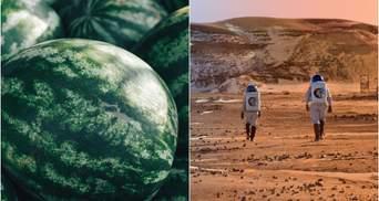 Видання NYT повідомило, що на Марсі ростуть кавуни: статтю вже видалили та все пояснили